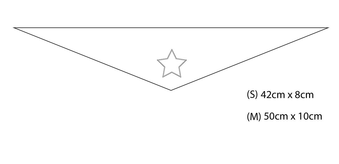 bandana-size.jpg